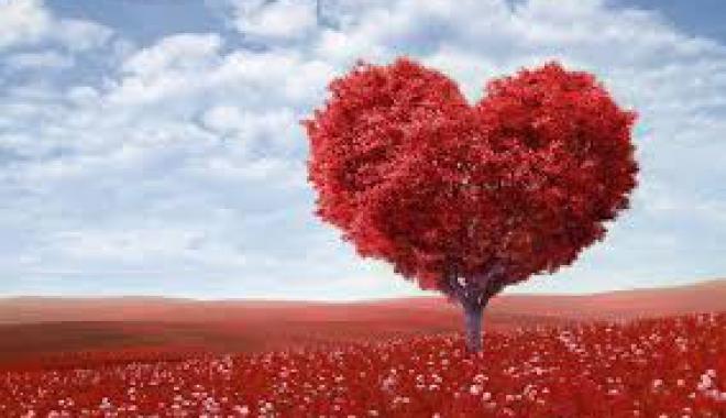 H παράλυση του φόβου, η δύναμη της αγάπης