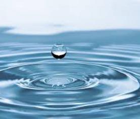 Οι ομιλίες  της Τετάρτης:  H μαγεία και η επίδραση του νερού στο σώμα, τα συναισθήματα και τη σκέψη.